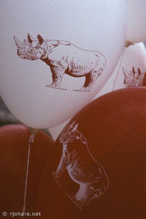 [Red and white rhino balloons at the Ross Commons opening]